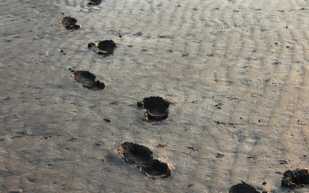 met de voeten in de klei footprints - communicatie voor jou